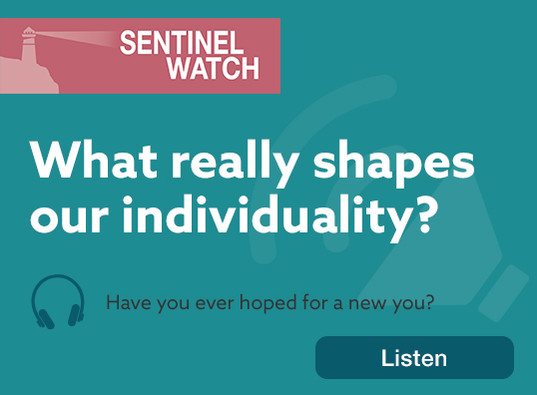 What really shapes our individuality?